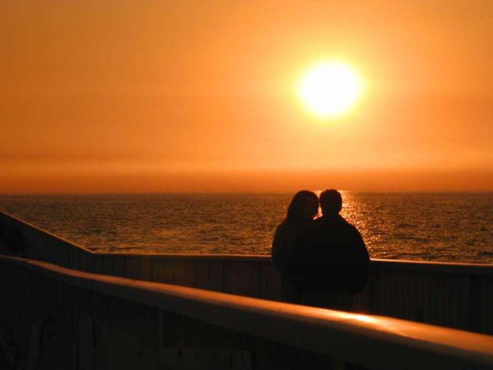 Seuls ceux qui risquent d'aimer sont libres.
