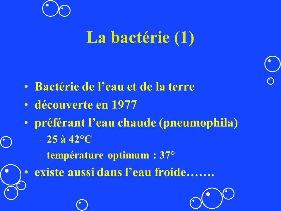 La bactérie (1) Bactérie de leau et de la terre découverte en 1977 préférant leau chaude (pneumophila) –25 à 42°C –température optimum : 37° existe au