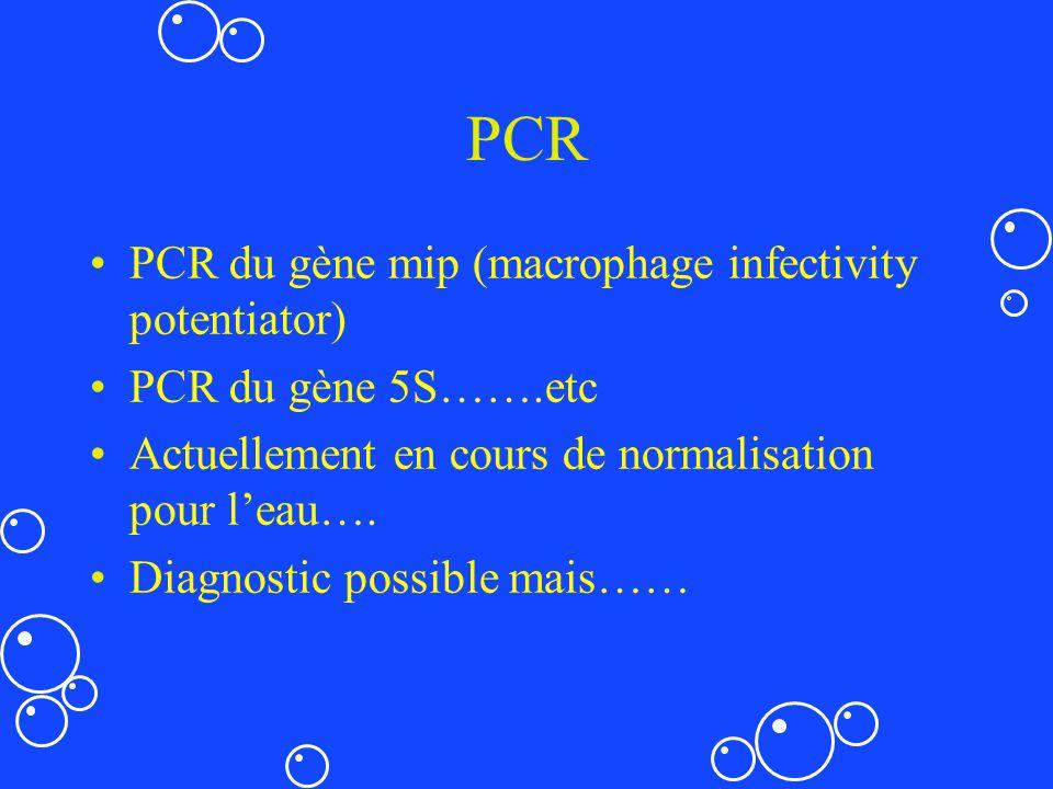 PCR PCR du gène mip (macrophage infectivity potentiator) PCR du gène 5S…….etc Actuellement en cours de normalisation pour leau…. Diagnostic possible m