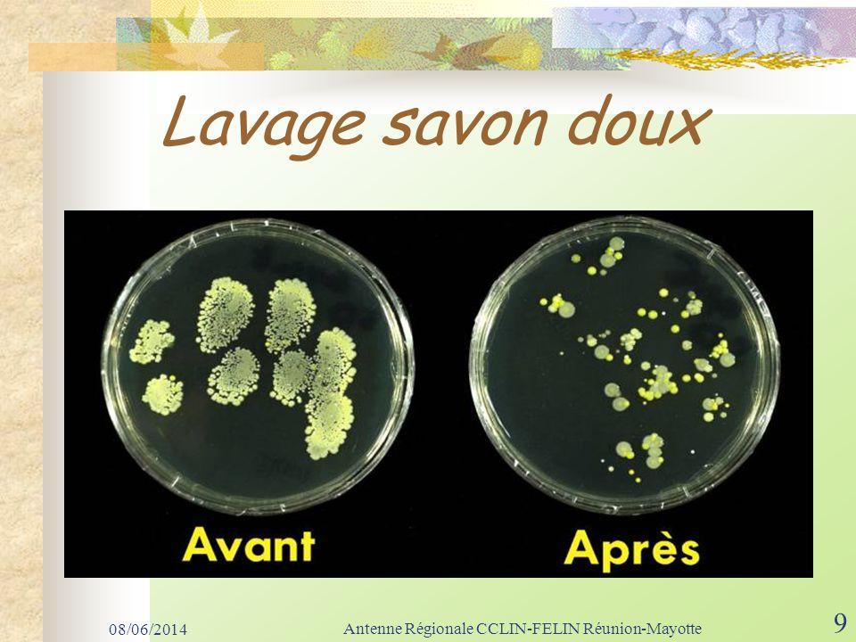 Lavage antiseptique 08/06/2014 Antenne Régionale CCLIN-FELIN Réunion-Mayotte 10