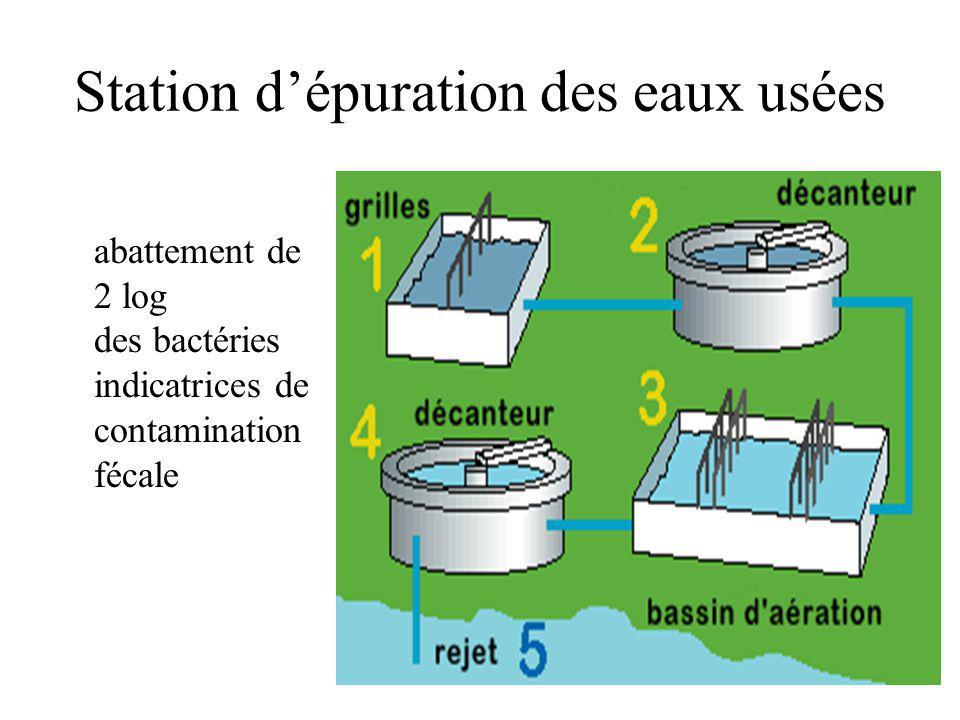 Station dépuration des eaux usées abattement de 2 log des bactéries indicatrices de contamination fécale