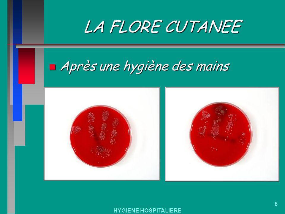 HYGIENE HOSPITALIERE 6 LA FLORE CUTANEE n Après une hygiène des mains
