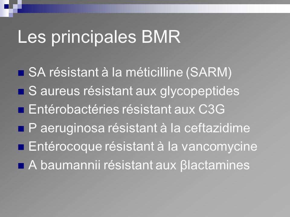 Les principales BMR SA résistant à la méticilline (SARM) S aureus résistant aux glycopeptides Entérobactéries résistant aux C3G P aeruginosa résistant