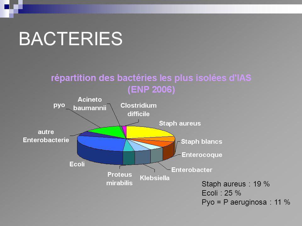 BACTERIES Staph aureus : 19 % Ecoli : 25 % Pyo = P aeruginosa : 11 %