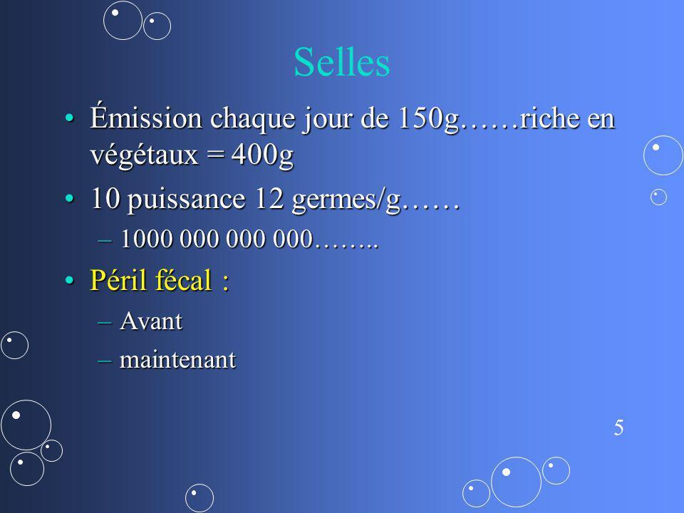 6 bmr 100 000 000 BMR / g de selles pour PORTEUR (Jérôme Robert)100 000 000 BMR / g de selles pour PORTEUR (Jérôme Robert)