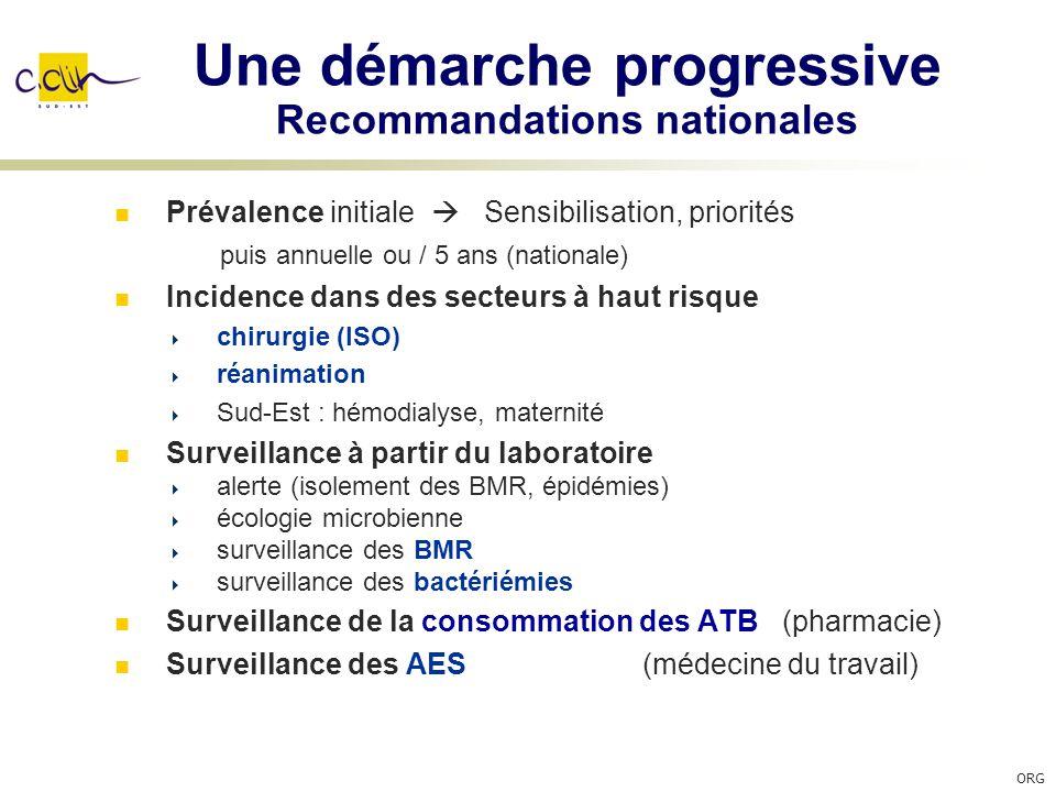 Une démarche progressive Recommandations nationales Prévalence initiale Sensibilisation, priorités puis annuelle ou / 5 ans (nationale) Incidence dans