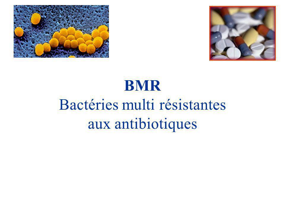 BMR Bactéries multi résistantes aux antibiotiques