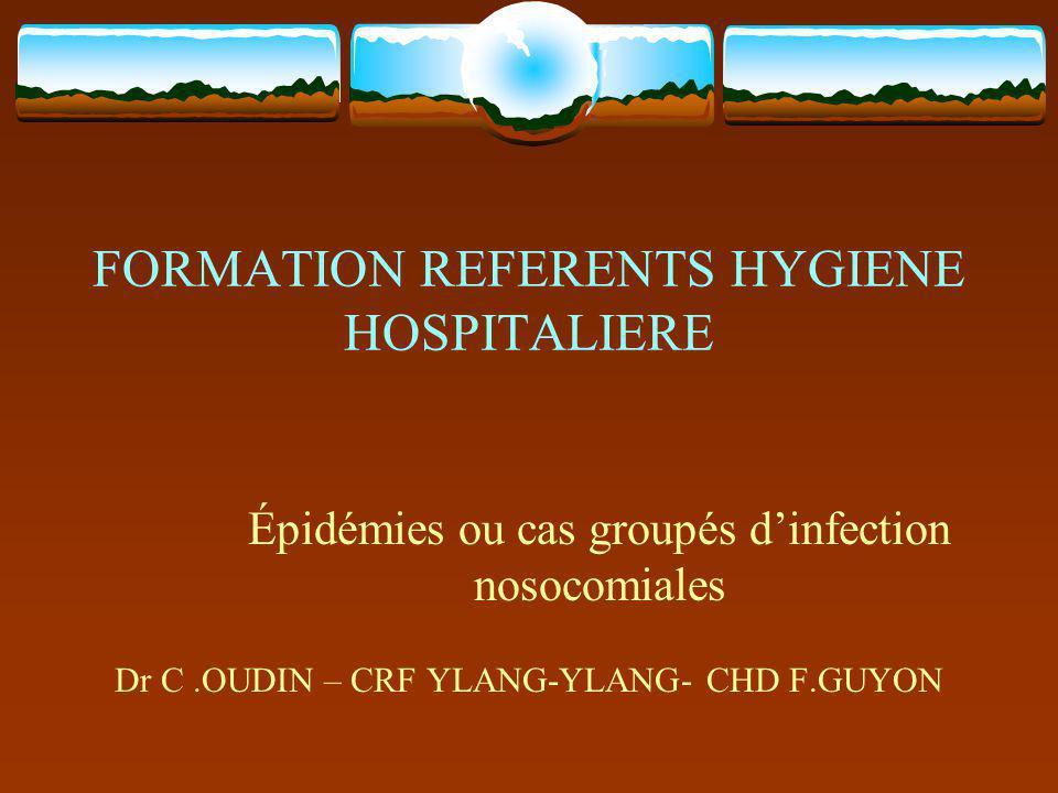 Épidémie dIN : définition (CTIN 1999) « Une épidémie se définit comme toute augmentation significative de la fréquence dune maladie au-delà de ce qui est observé habituellement.