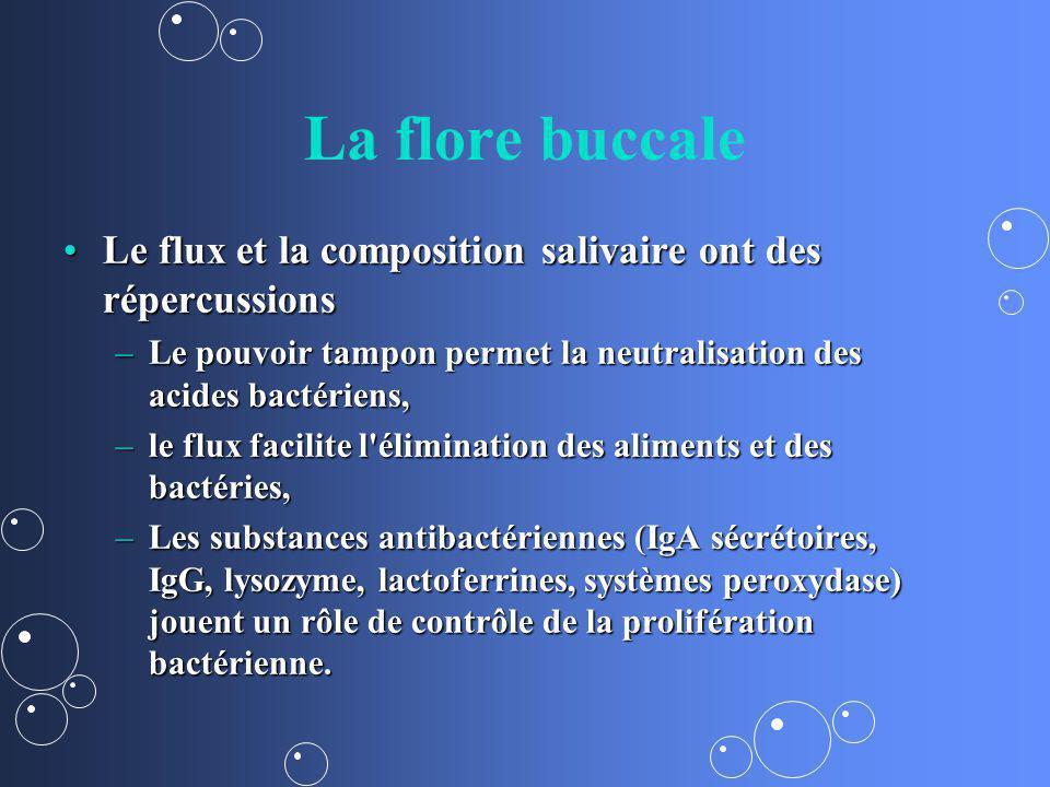 La flore buccale Le flux et la composition salivaire ont des répercussionsLe flux et la composition salivaire ont des répercussions –Le pouvoir tampon