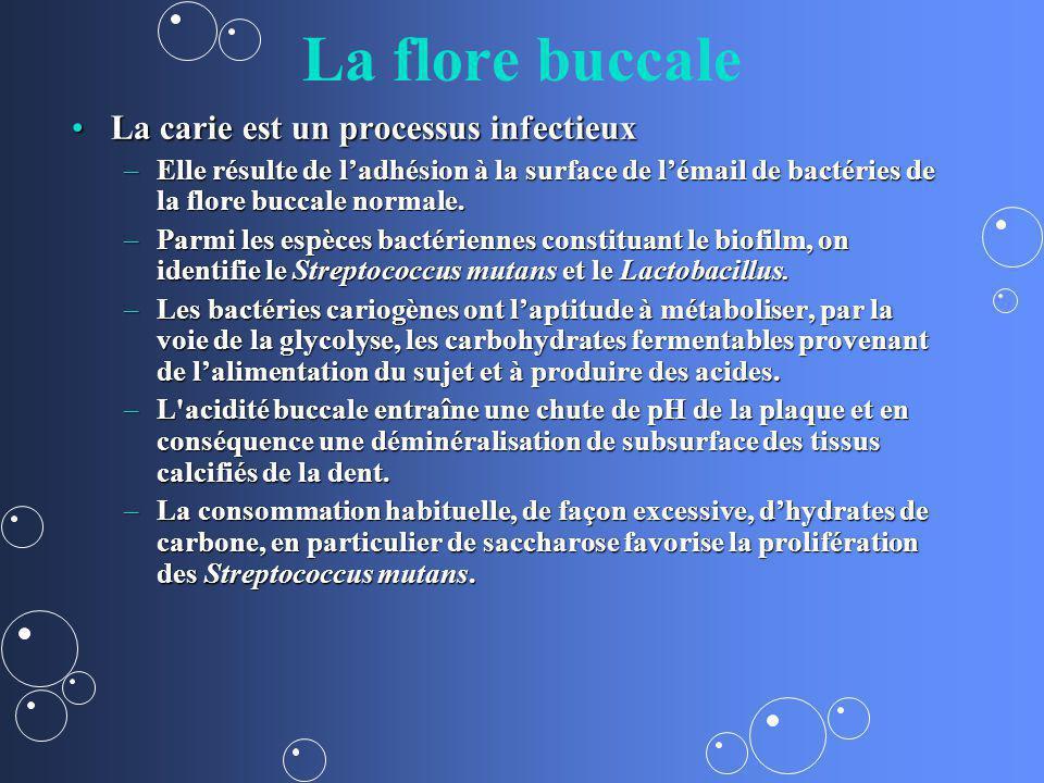 La flore buccale La carie est un processus infectieuxLa carie est un processus infectieux –Elle résulte de ladhésion à la surface de lémail de bactéri