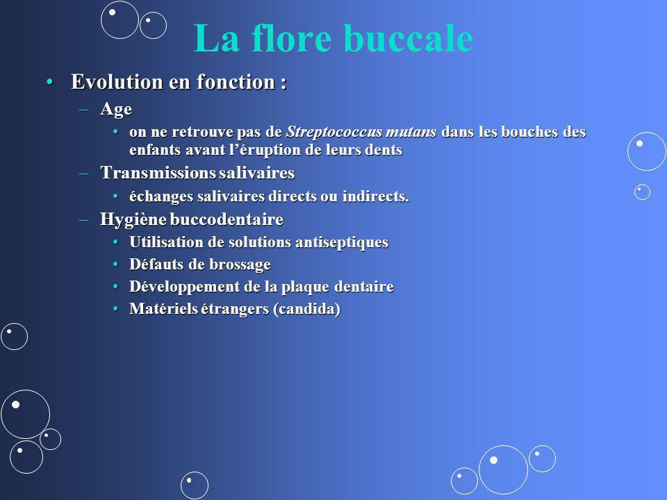 La flore buccale Evolution en fonction :Evolution en fonction : –Age on ne retrouve pas de Streptococcus mutans dans les bouches des enfants avant lér