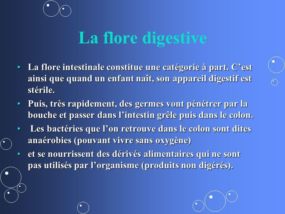 La flore digestive La flore intestinale constitue une catégorie à part. Cest ainsi que quand un enfant naît, son appareil digestif est stérile.La flor