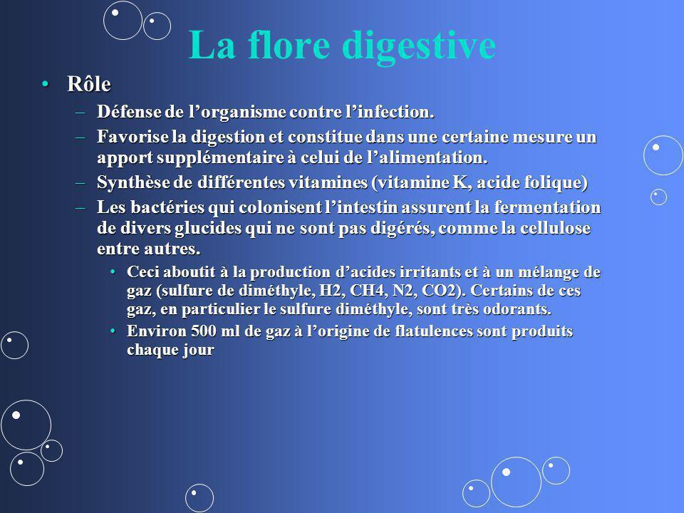 La flore digestive RôleRôle –Défense de lorganisme contre linfection. –Favorise la digestion et constitue dans une certaine mesure un apport supplémen
