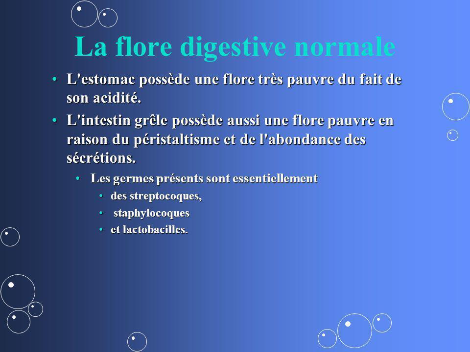 La flore digestive normale L'estomac possède une flore très pauvre du fait de son acidité.L'estomac possède une flore très pauvre du fait de son acidi