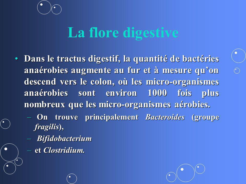 La flore digestive Dans le tractus digestif, la quantité de bactéries anaérobies augmente au fur et à mesure quon descend vers le colon, où les micro-