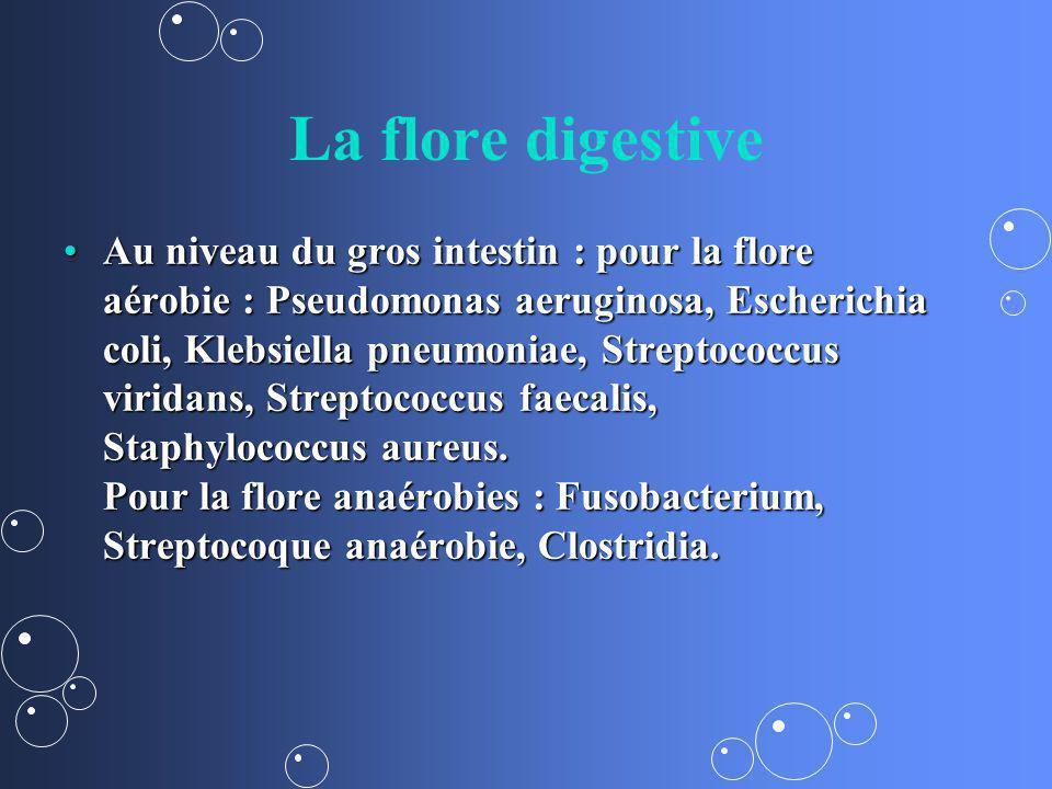 La flore digestive Au niveau du gros intestin : pour la flore aérobie : Pseudomonas aeruginosa, Escherichia coli, Klebsiella pneumoniae, Streptococcus