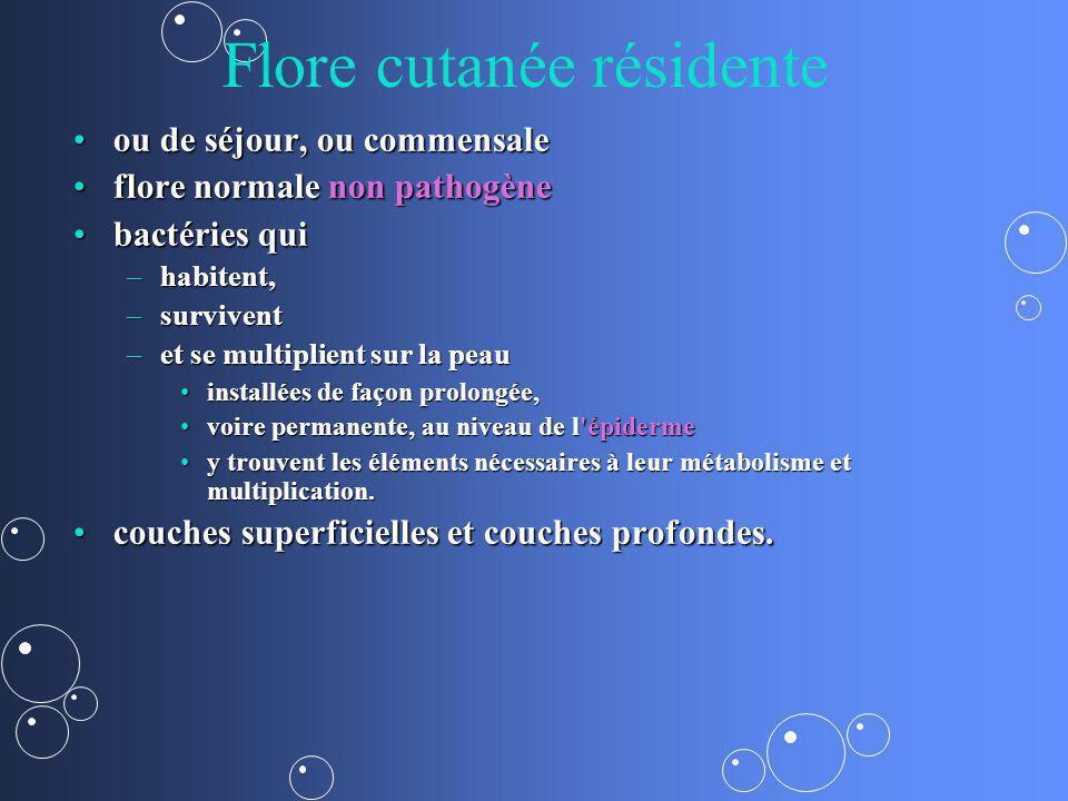 Flore cutanée résidente ou de séjour, ou commensaleou de séjour, ou commensale flore normale non pathogèneflore normale non pathogène bactéries quibac