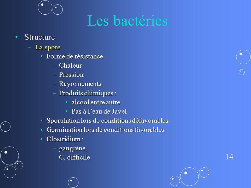 14 Les bactéries StructureStructure –La spore Forme de résistanceForme de résistance –Chaleur –Pression –Rayonnements –Produits chimiques : alcool ent