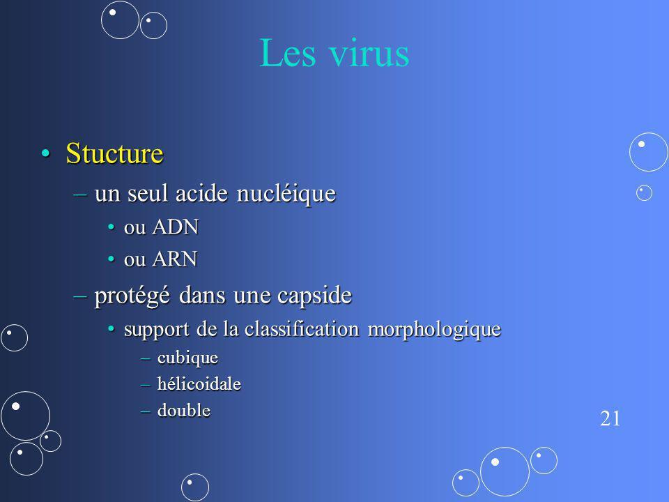 21 Les virus StuctureStucture –un seul acide nucléique ou ADNou ADN ou ARNou ARN –protégé dans une capside support de la classification morphologiques