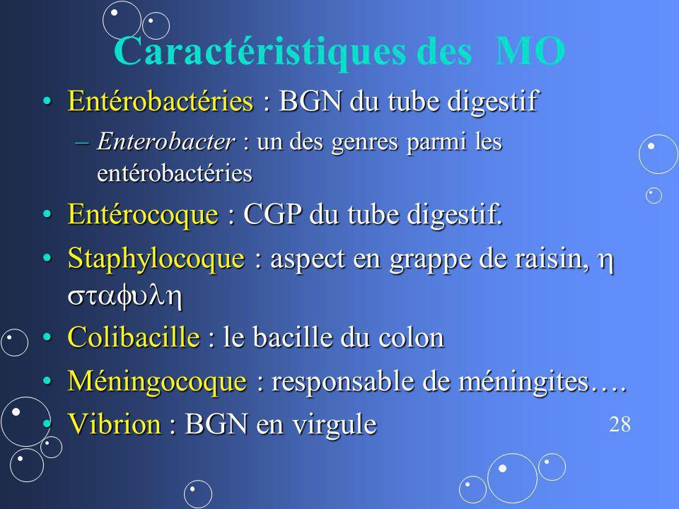 28 Caractéristiques des MO Entérobactéries : BGN du tube digestifEntérobactéries : BGN du tube digestif –Enterobacter : un des genres parmi les entéro