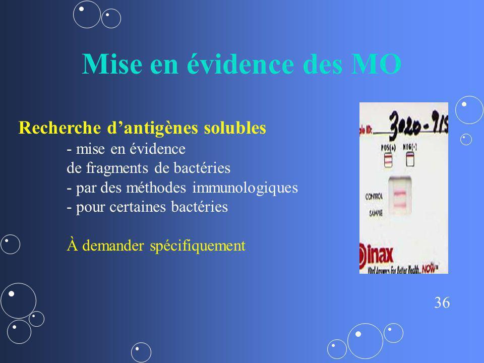 36 Mise en évidence des MO Recherche dantigènes solubles - mise en évidence de fragments de bactéries - par des méthodes immunologiques - pour certain