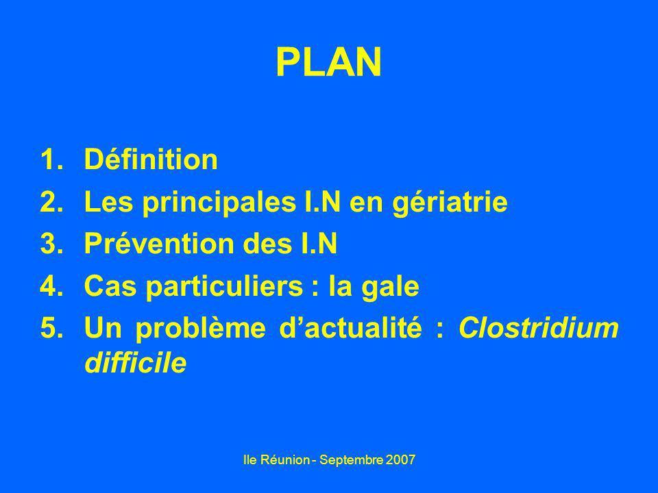 Ile Réunion - Septembre 2007 PLAN 1.Définition 2.Les principales I.N en gériatrie 3.Prévention des I.N 4.Cas particuliers : la gale 5.Un problème dact