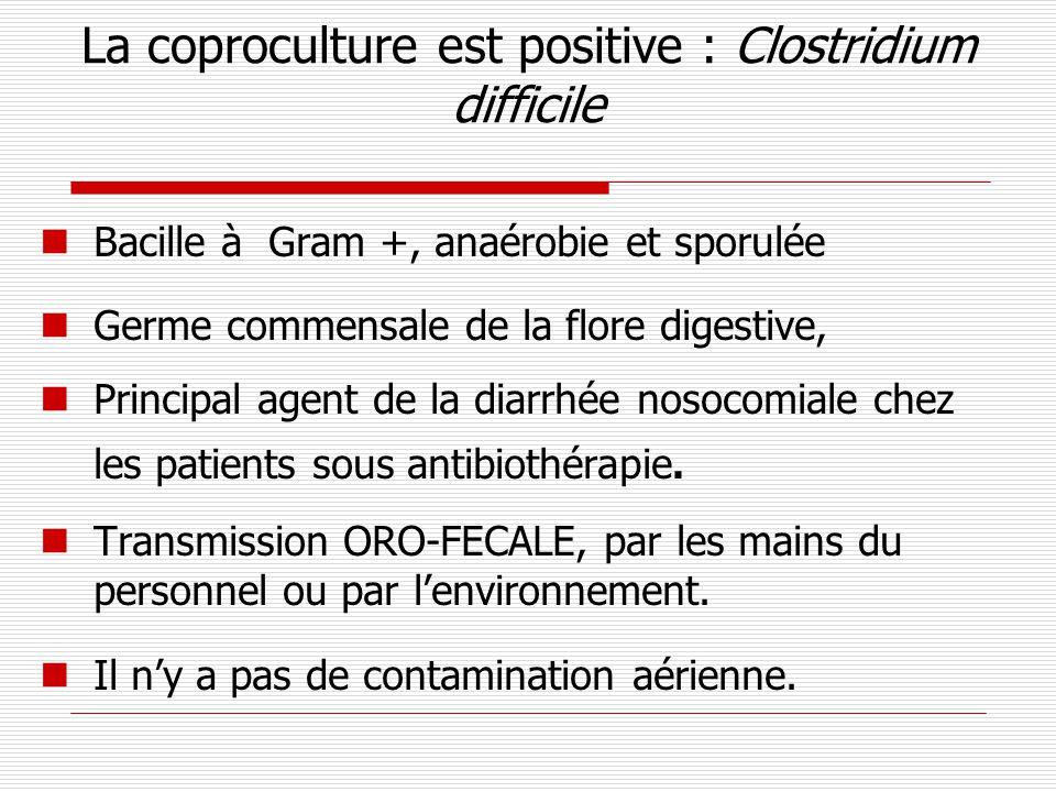 La coproculture est positive : Clostridium difficile Bacille à Gram +, anaérobie et sporulée Germe commensale de la flore digestive, Principal agent d