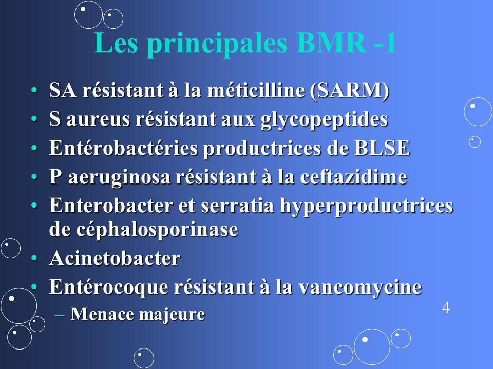 4 Les principales BMR -1 SA résistant à la méticilline (SARM)SA résistant à la méticilline (SARM) S aureus résistant aux glycopeptidesS aureus résista