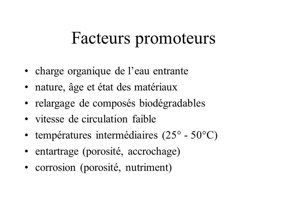 Facteurs promoteurs charge organique de leau entrante nature, âge et état des matériaux relargage de composés biodégradables vitesse de circulation faible températures intermédiaires (25° - 50°C) entartrage (porosité, accrochage) corrosion (porosité, nutriment)