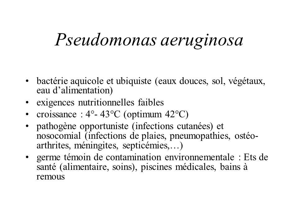 Pseudomonas aeruginosa bactérie aquicole et ubiquiste (eaux douces, sol, végétaux, eau dalimentation) exigences nutritionnelles faibles croissance : 4°- 43°C (optimum 42°C) pathogène opportuniste (infections cutanées) et nosocomial (infections de plaies, pneumopathies, ostéo- arthrites, méningites, septicémies,…) germe témoin de contamination environnementale : Ets de santé (alimentaire, soins), piscines médicales, bains à remous