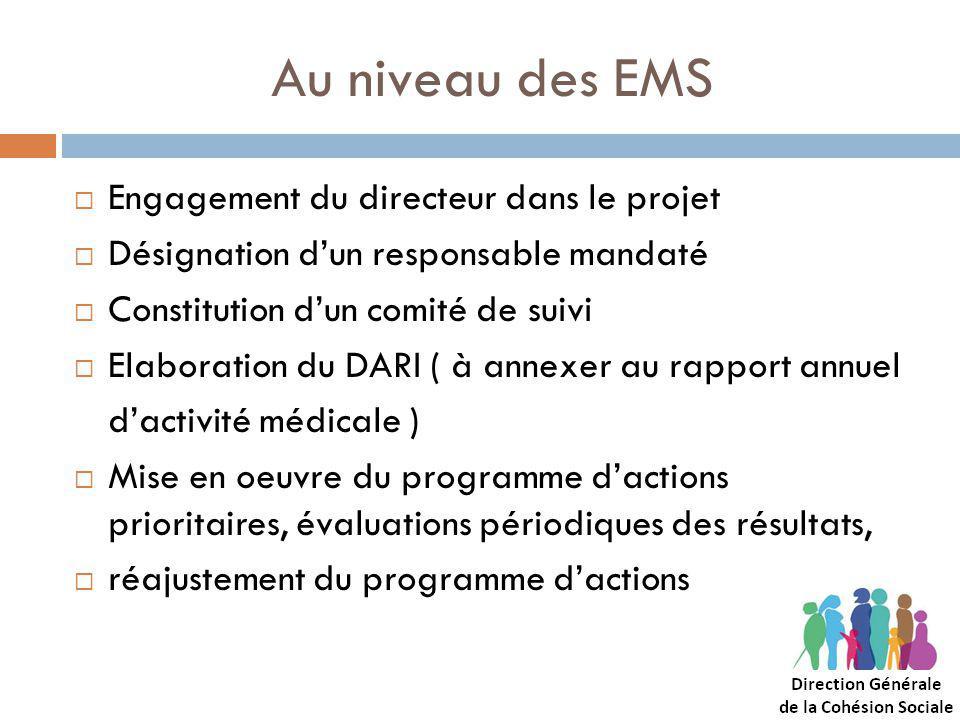 Au niveau des EMS Engagement du directeur dans le projet Désignation dun responsable mandaté Constitution dun comité de suivi Elaboration du DARI ( à annexer au rapport annuel dactivité médicale ) Mise en oeuvre du programme dactions prioritaires, évaluations périodiques des résultats, réajustement du programme dactions