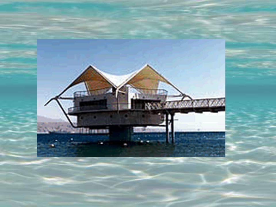 Pour arriver sur les lieux, construit dan un récif de corail, il faut marcher plus de 40 mètres sur une plateforme qui va de la plage jusquau pavillon d entrée.