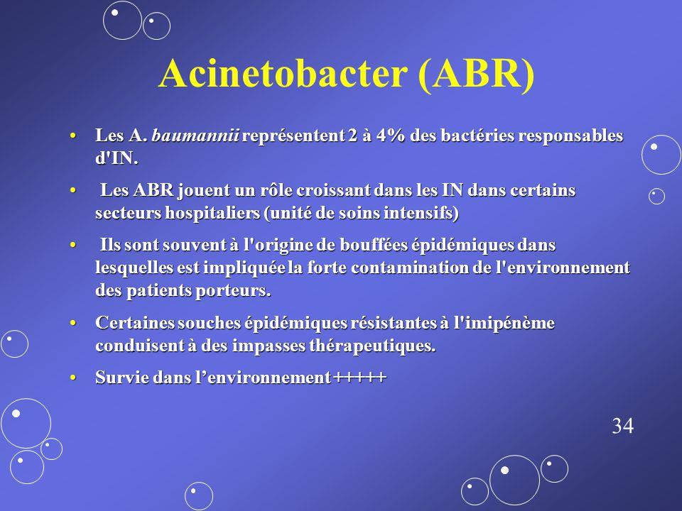 33 EBLSE Entérobactéries : 35 à 40% des bactéries responsables d'IN.Entérobactéries : 35 à 40% des bactéries responsables d'IN. EBLSE : environ 1% des