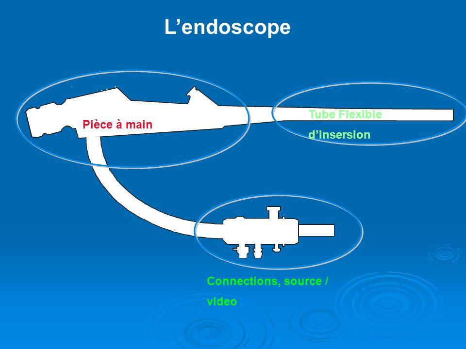 Endoscopes souples (2) Gaine principale : Gaine principale : uniquement diagnostique : endoscope « plein » uniquement diagnostique : endoscope « plein » permet le passage de fluides (air, eau, CO2) : endoscope « creux » avec canal opérateur permet le passage de fluides (air, eau, CO2) : endoscope « creux » avec canal opérateur permet lintroduction daccessoires (pinces à biopsie) permet lintroduction daccessoires (pinces à biopsie)