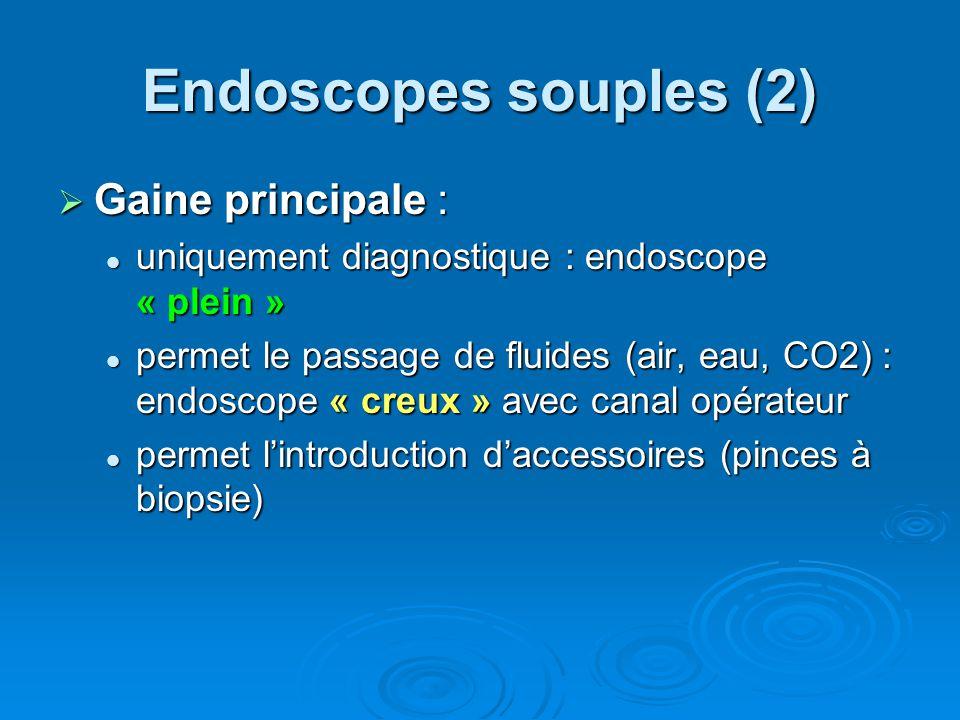 BRONCHOSCOPES PENTAX FB15 ET FB 18 6 cas de contaminations de bronchoscopes Pentax de type FB15 et FB18 par des souches de Pseudomonas aeruginosa et/ou Stenotrophomonas maltophilia ont été signalés à lAFSSAPS entre le 18 juin et le 06 août 2003 Origine des contaminations : 1.