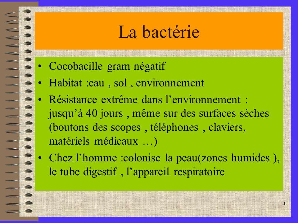 4 La bactérie Cocobacille gram négatif Habitat :eau, sol, environnement Résistance extrême dans lenvironnement : jusquà 40 jours, même sur des surfaces sèches (boutons des scopes, téléphones, claviers, matériels médicaux …) Chez lhomme :colonise la peau(zones humides ), le tube digestif, lappareil respiratoire