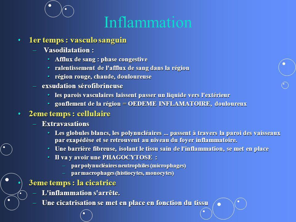 Inflammation 1er temps : vasculo sanguin1er temps : vasculo sanguin – Vasodilatation : Afflux de sang : phase congestiveAfflux de sang : phase congest