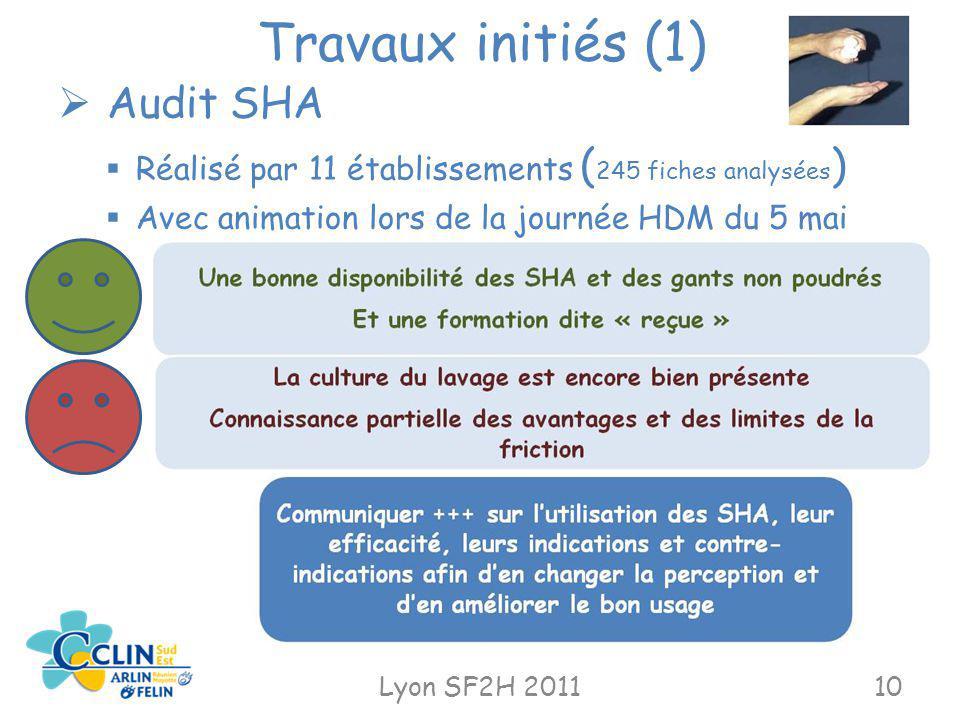 Travaux initiés (1) Lyon SF2H 201110 Audit SHA Réalisé par 11 établissements ( 245 fiches analysées ) Avec animation lors de la journée HDM du 5 mai