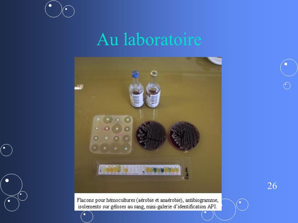 26 Au laboratoire