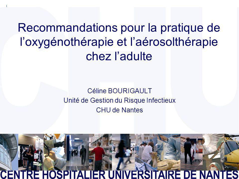 CENTRE HOSPITALIER UNIVERSITAIRE DE NANTES Page 1 Recommandations pour la pratique de loxygénothérapie et laérosolthérapie chez ladulte Céline BOURIGA