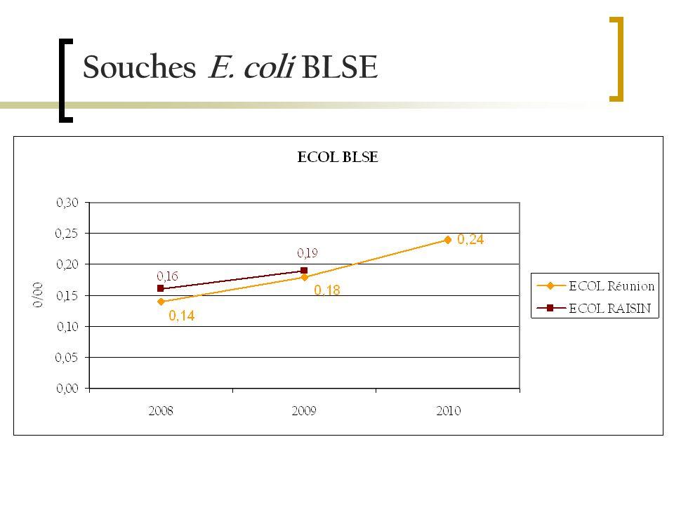 Souches E. coli BLSE