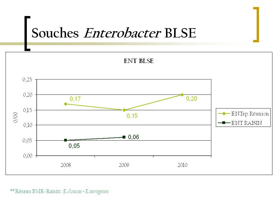 Souches Enterobacter BLSE ** Réseau BMR-Raisin : E.cloacae + E.aerogenes