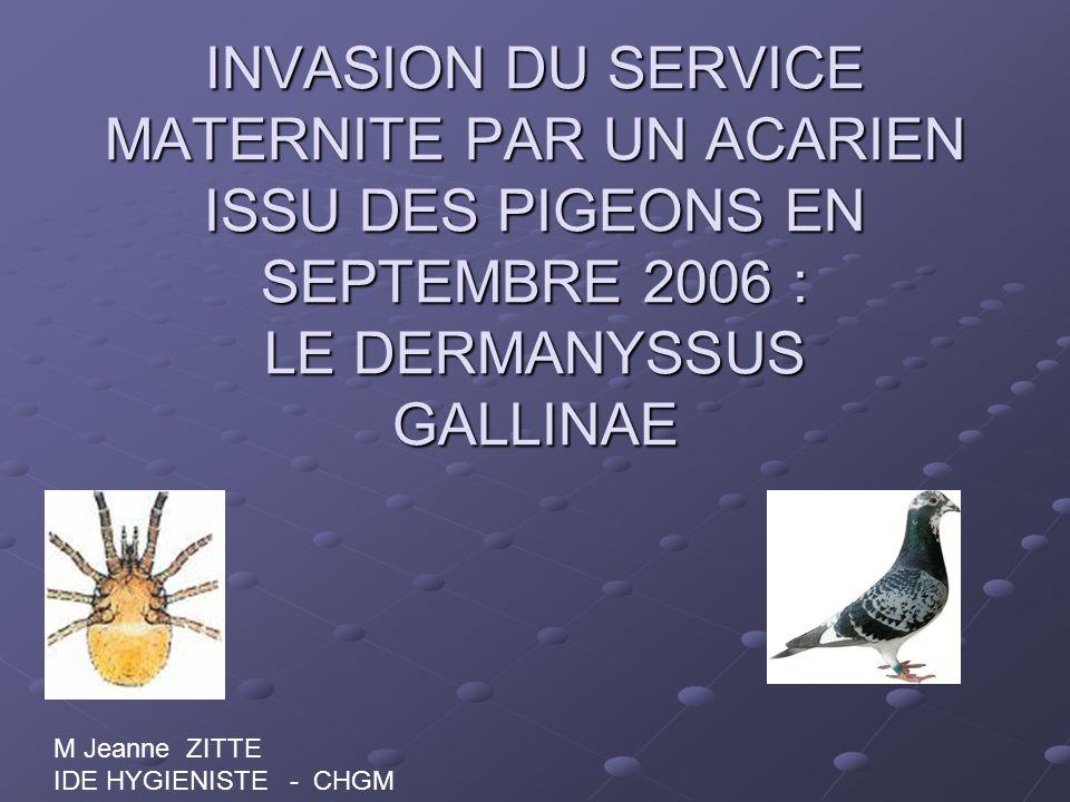 INVASION DU SERVICE MATERNITE PAR UN ACARIEN ISSU DES PIGEONS EN SEPTEMBRE 2006 : LE DERMANYSSUS GALLINAE M Jeanne ZITTE IDE HYGIENISTE - CHGM