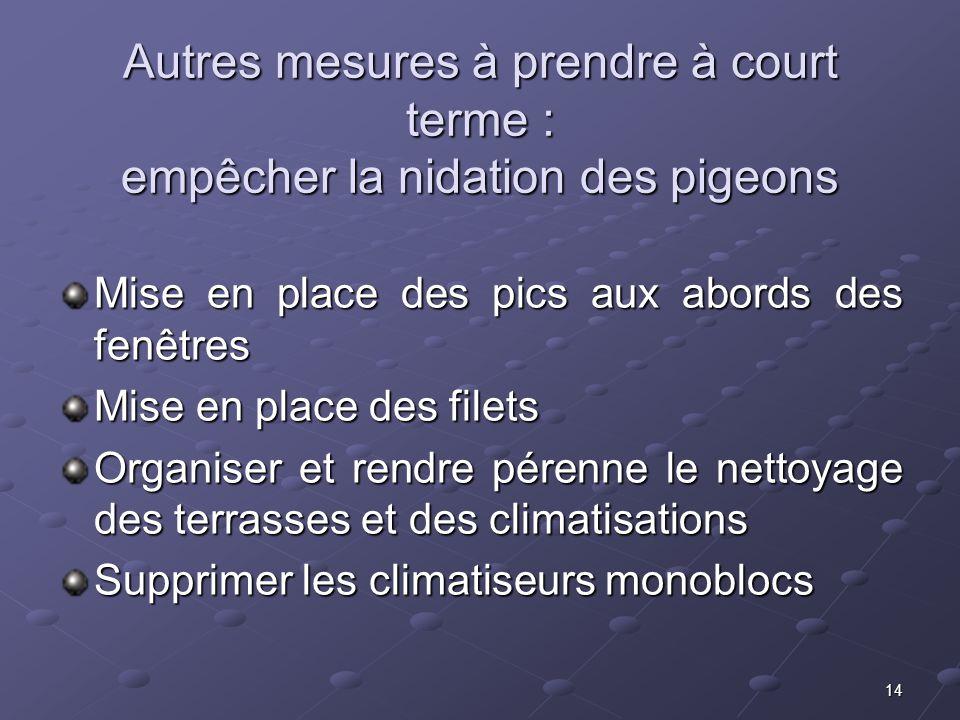 14 Autres mesures à prendre à court terme : empêcher la nidation des pigeons Mise en place des pics aux abords des fenêtres Mise en place des filets O