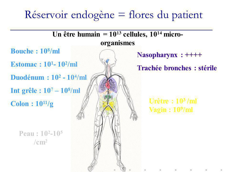 Réservoir endogène = flores du patient Un être humain = 10 13 cellules, 10 14 micro- organismes Bouche : 10 8 /ml Estomac : 10 1 - 10 2 /ml Duodénum : 10 2 - 10 4 /ml Int grêle : 10 7 – 10 8 /ml Colon : 10 11 /g Nasopharynx : ++++ Trachée bronches : stérile Peau : 10 2 -10 5 /cm 2 Urètre : 10 3 /ml Vagin : 10 9 /ml