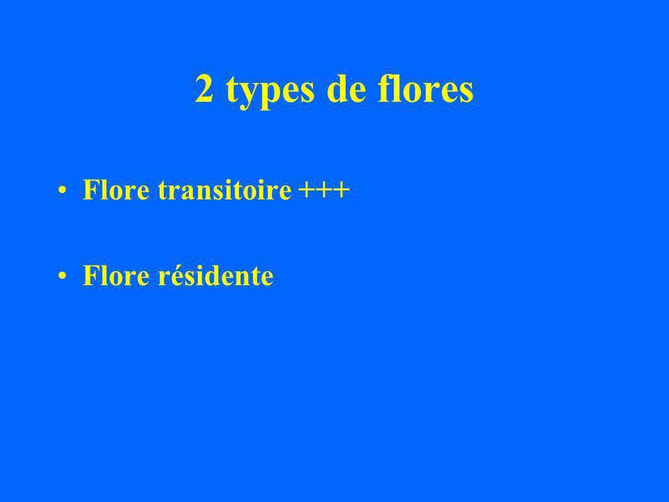 2 types de flores Flore transitoire +++ Flore résidente