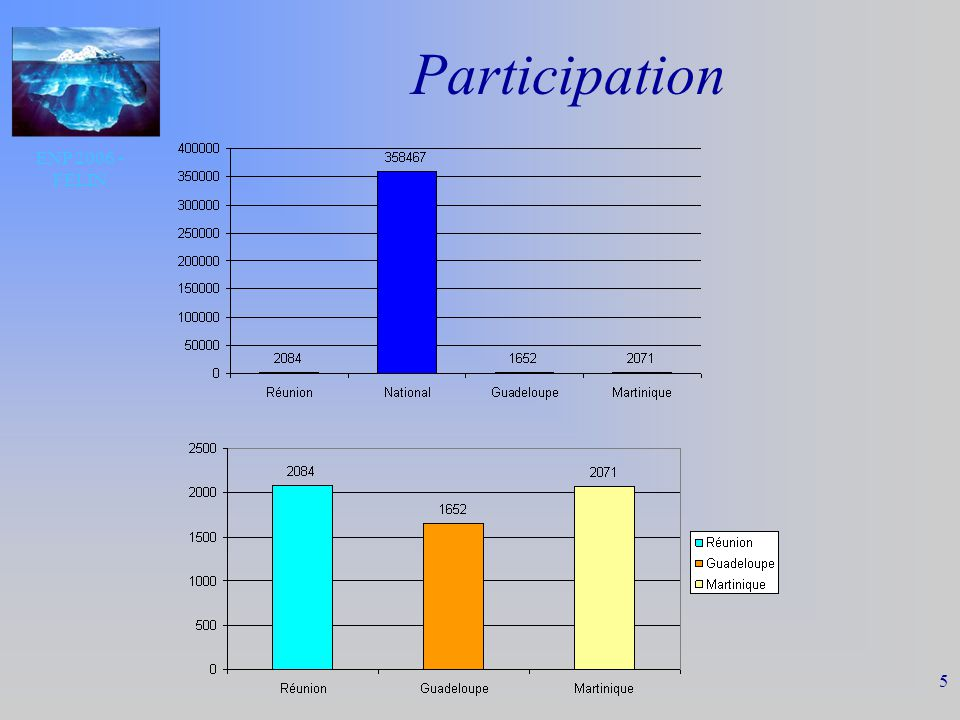 ENP 2006 - FELIN 5 Participation