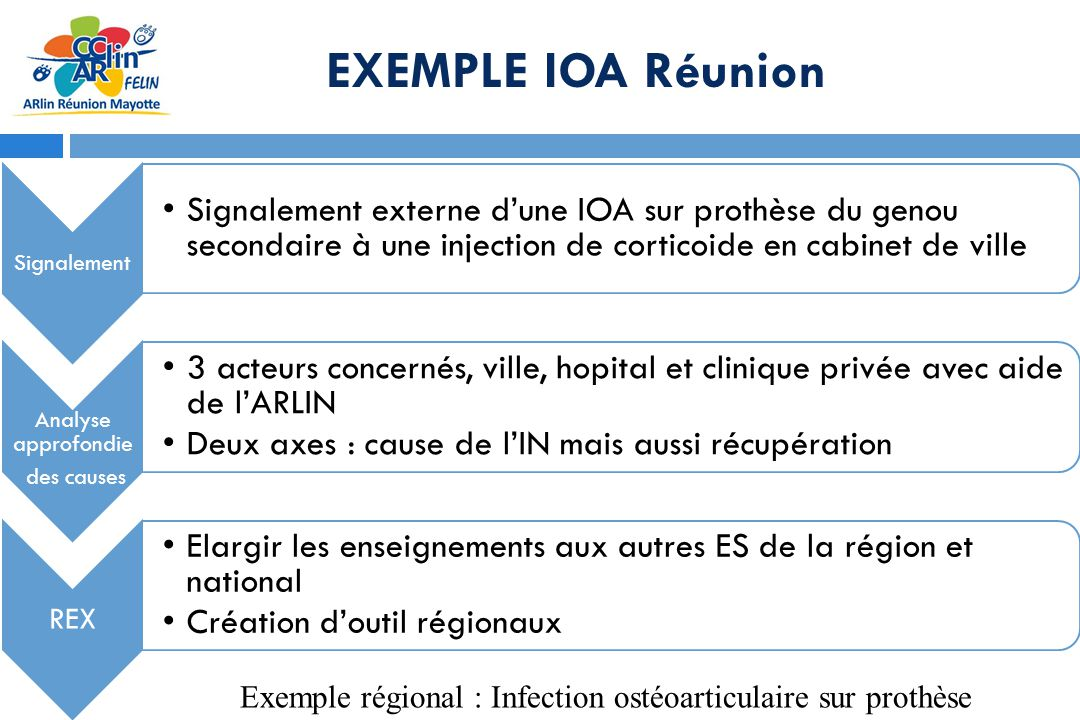 Mise en œuvre à la Réunion Formation à la VDR des hygienistes début 2012 Organisation de visites de risques croisées : ARLIN + PH hygieniste dun autre établissement Clinique orchidée (croisée avec C Ste Clotilde) Endoscopie digestive CHU sud (croisée CHU nord) Clinique Durieux (croisée Chu sud) Complète deux actions précédentes : Audit régional en 2008 Formations endoscopie: 2009-2010-2012-2013
