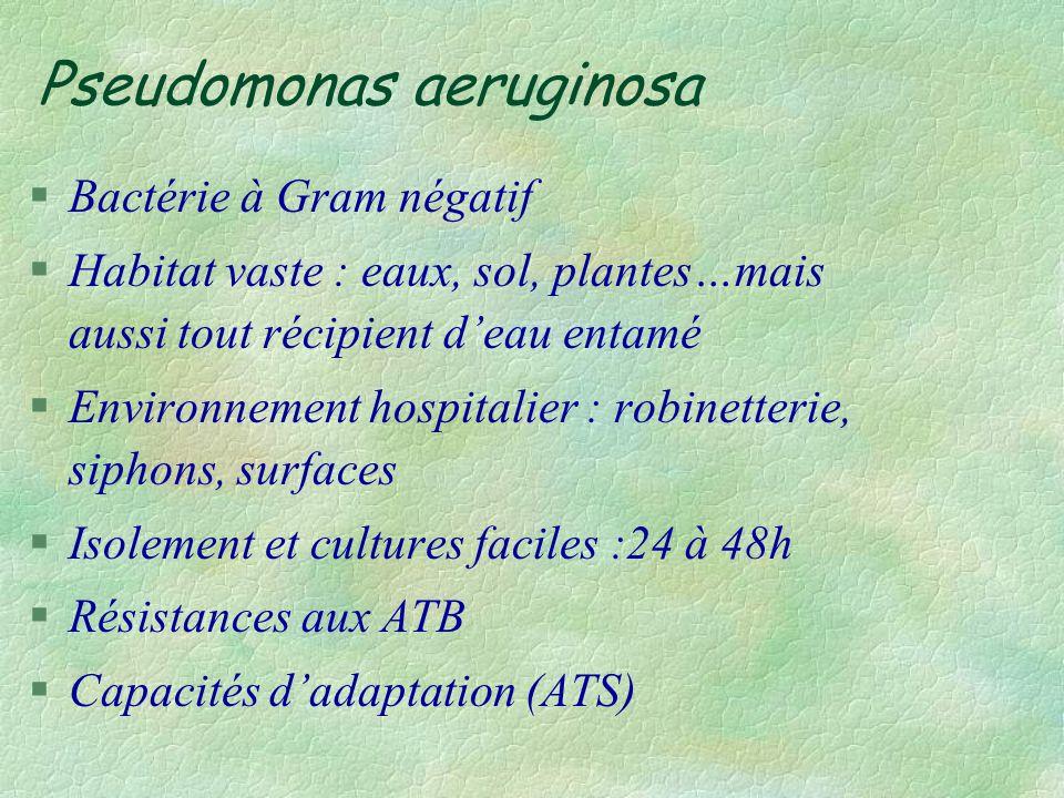 Pseudomonas aeruginosa : pyo §90 % des pseudomonas isolés au laboratoire §3ème bactérie responsable dinfection nosocomiale : 10 % des IN sont dues au pyo §Mortalité: bactériémie, pneumopathie, néonatologie.