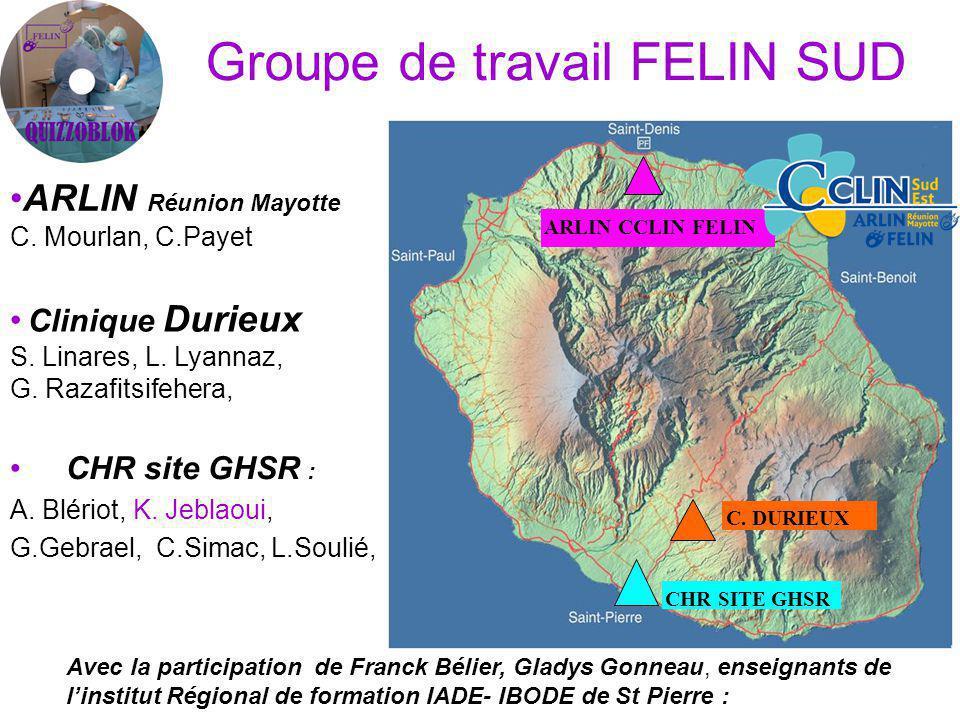 Groupe de travail FELIN SUD CHR site GHSR : A.Blériot, K.